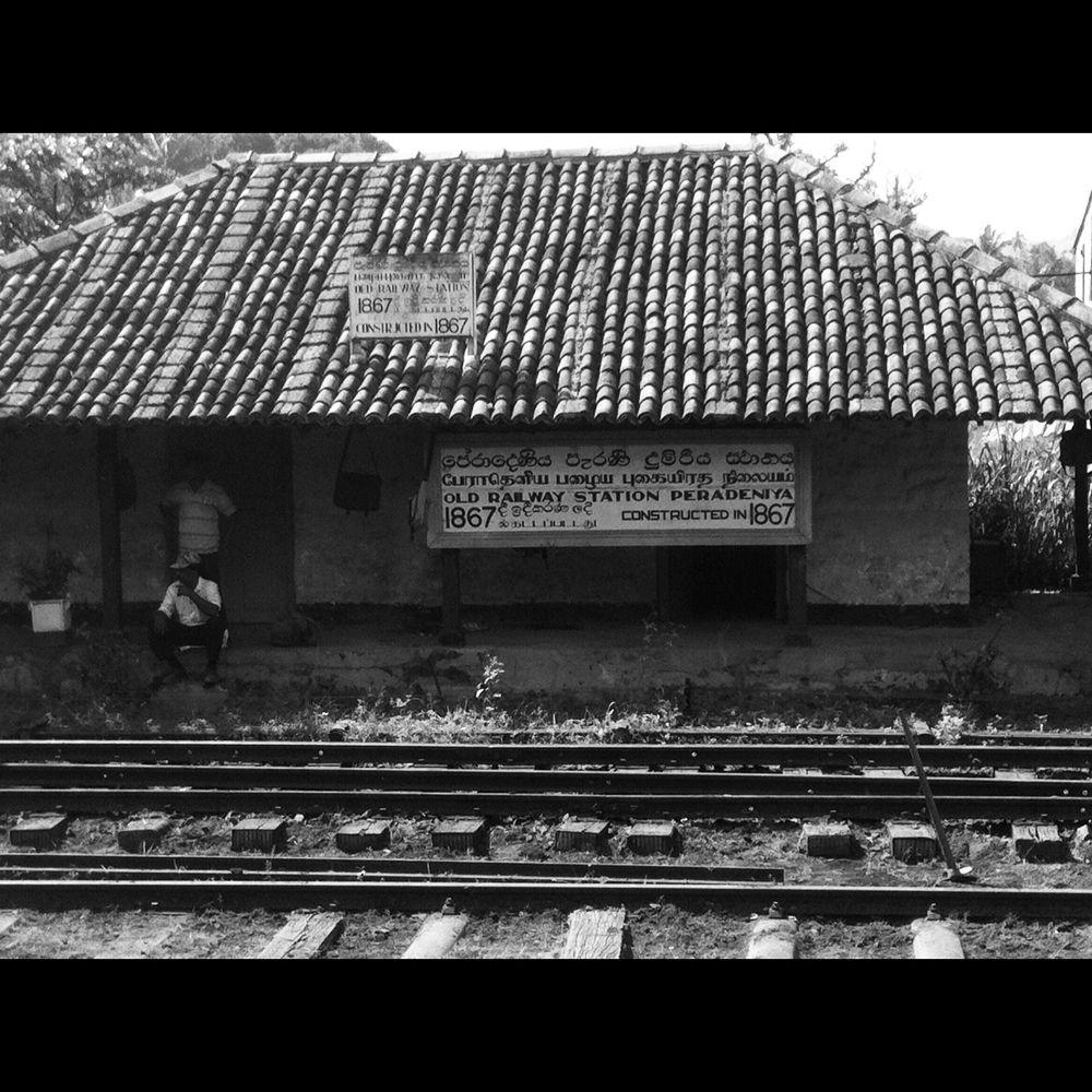 IMG_0643 by rabadilan