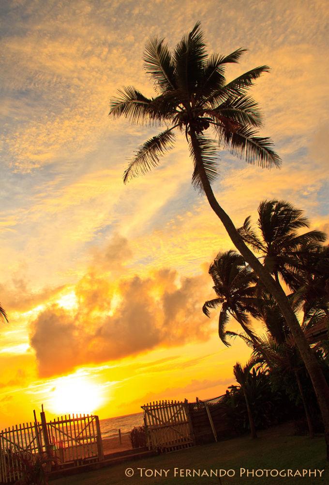 Sunset ....IMG_5663..... by tony fernando