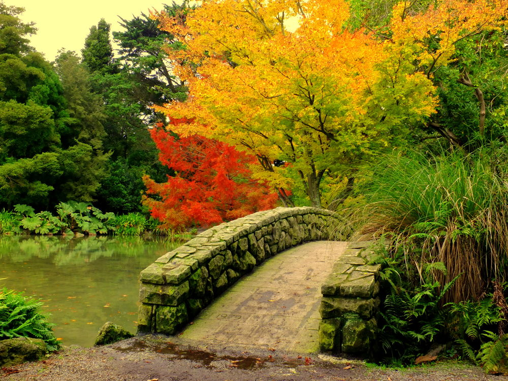 The Gardens by donaldparish12