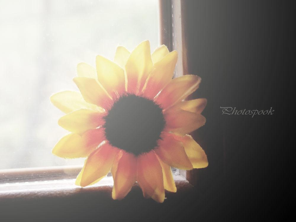 Flower by francescadesomma