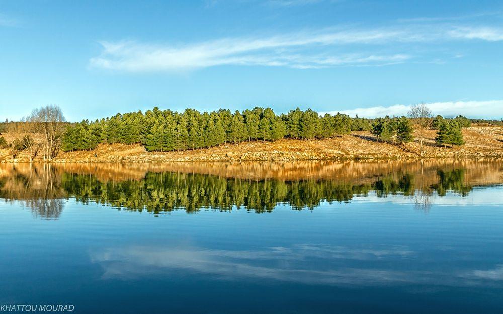 Photo in Landscape #lake #reflexion