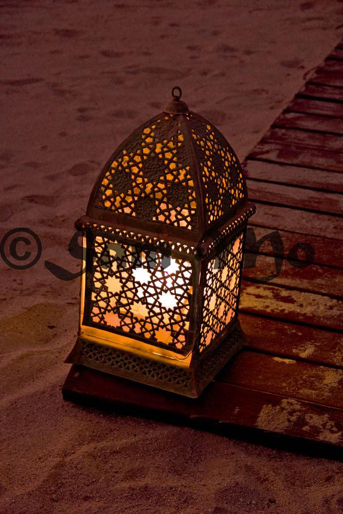 I love lamp.. by Sam Mo