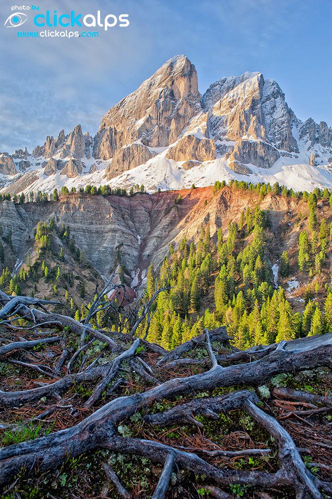 Sass de Putia in Dolomites (Dalvit-Giorgio) by clickalps