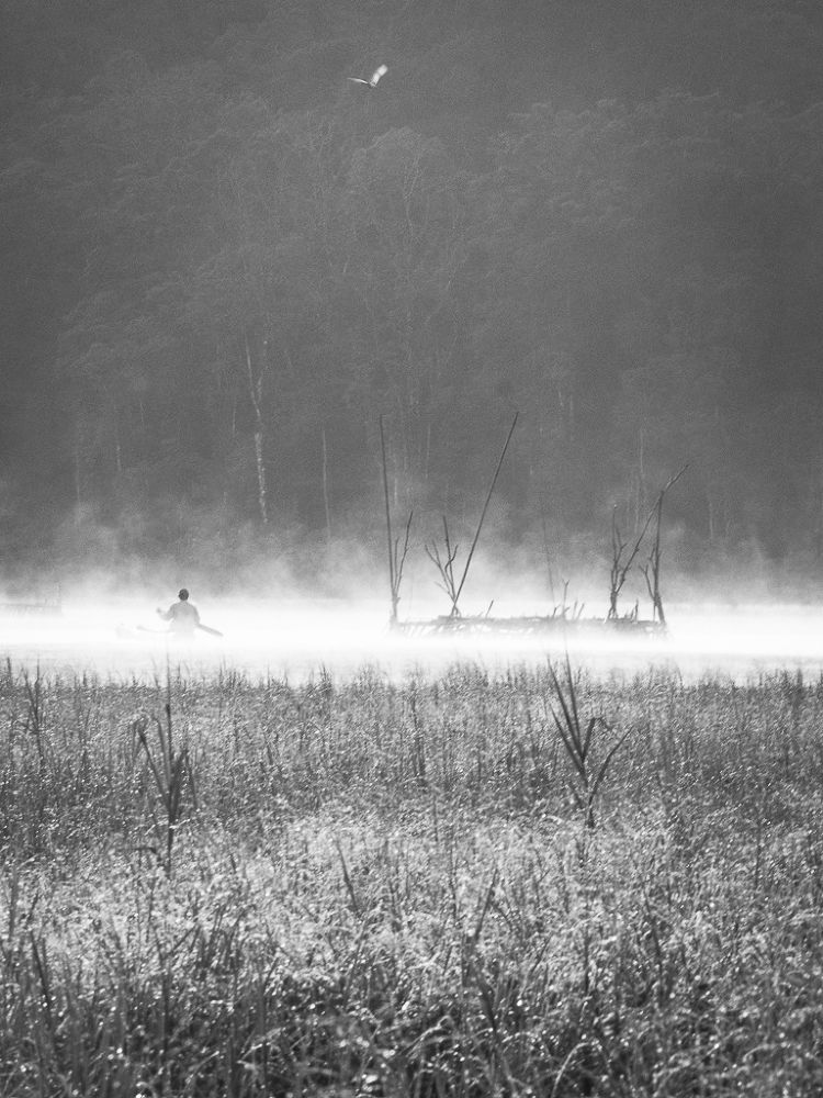 misty lake by A.A. GD Putra Yoga Paramarta