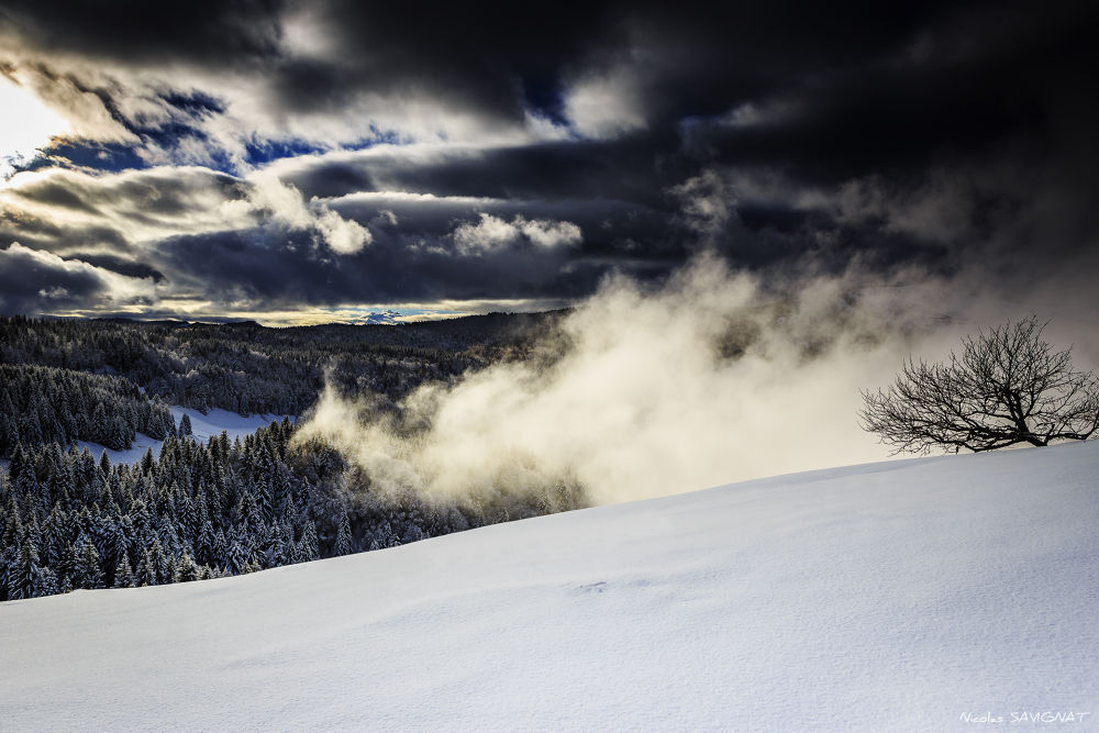 Photo in Landscape #snow #france #bauges #massif #neige #montagne #mountain