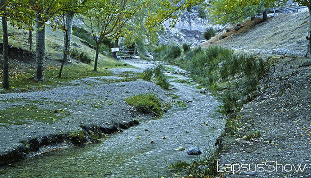 Nacimiento  by LapsusShow