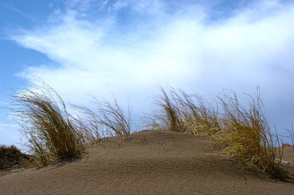 Maranjab desert #13 by sahoora83