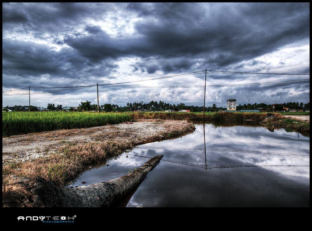 Sekinchan Village by andyteoh73