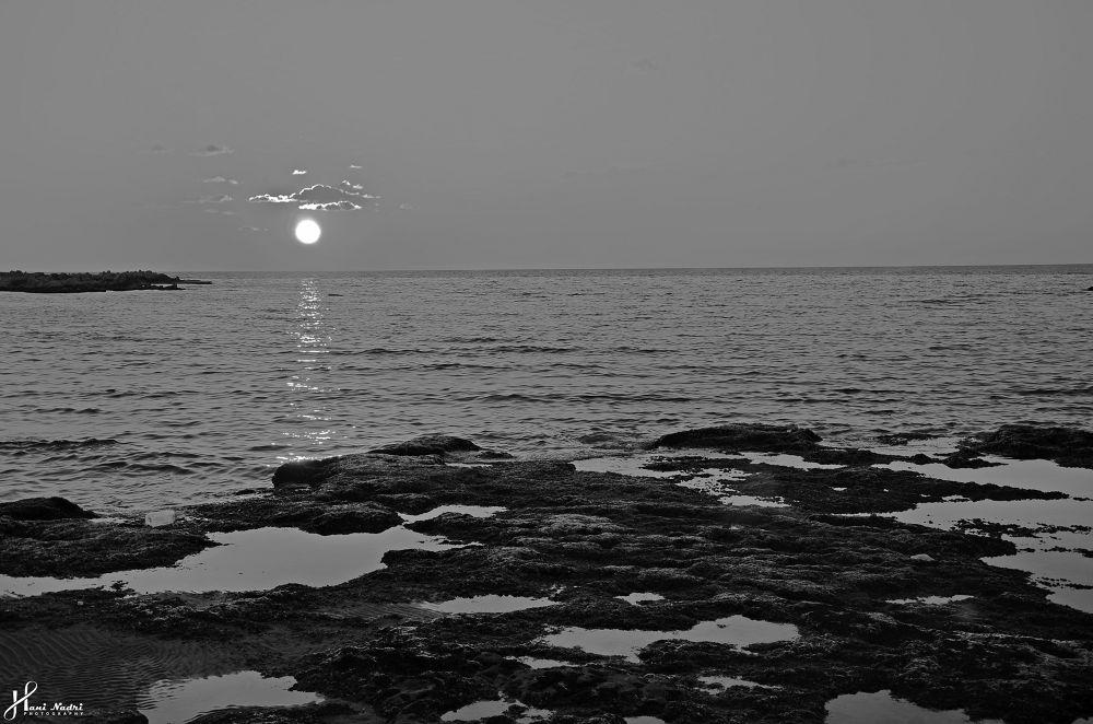 _DSC3173 by Hani Nadri Photography
