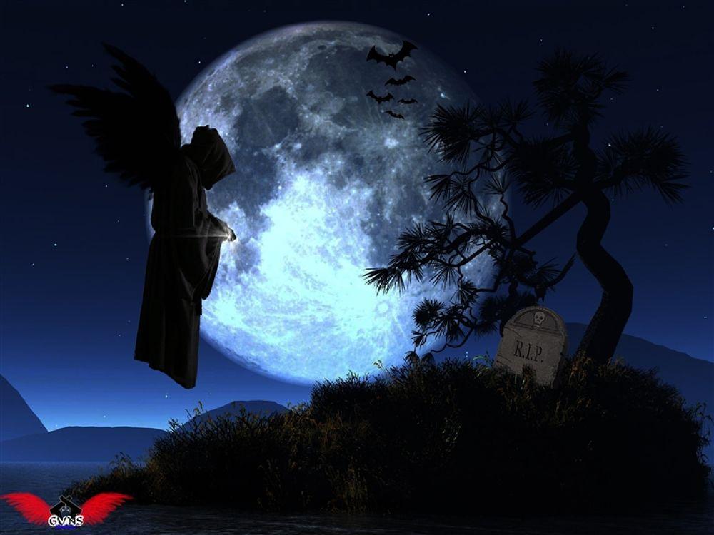 Photo in Random #dark #gothic