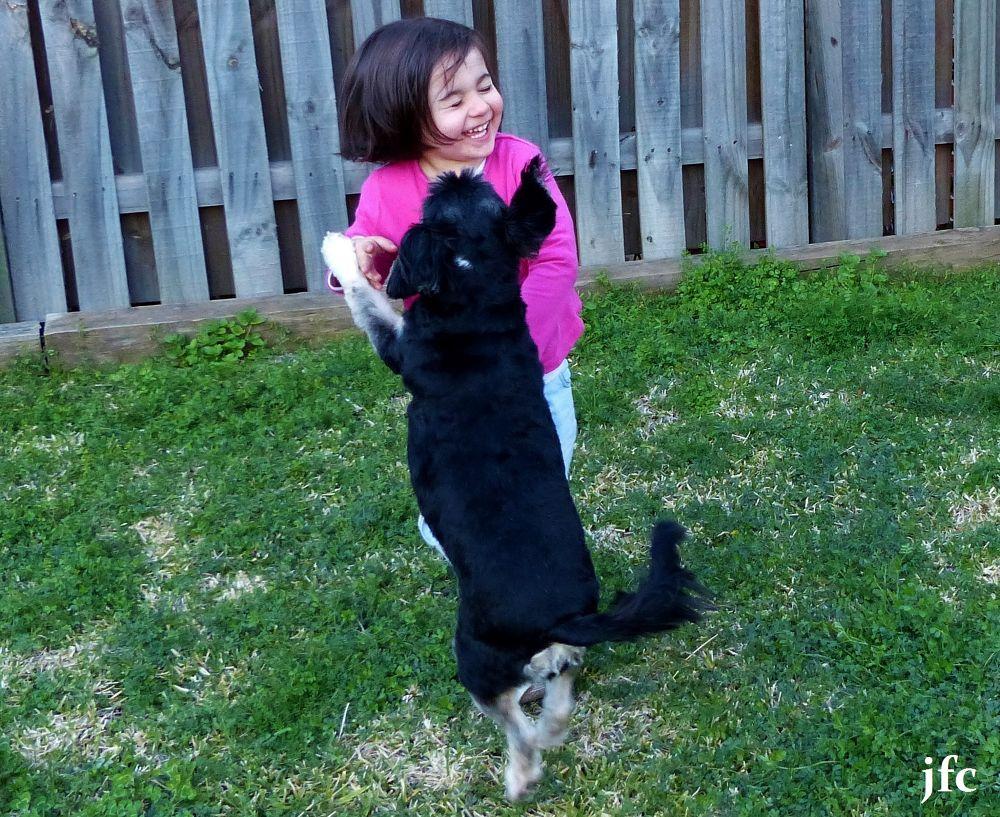 P1010076   i love my dog by johnfalconcostanzo