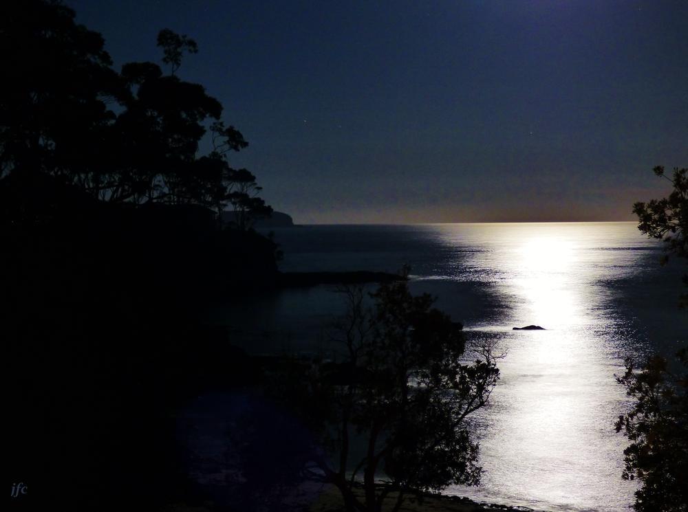 P1010758   Moonlighting   by johnfalconcostanzo
