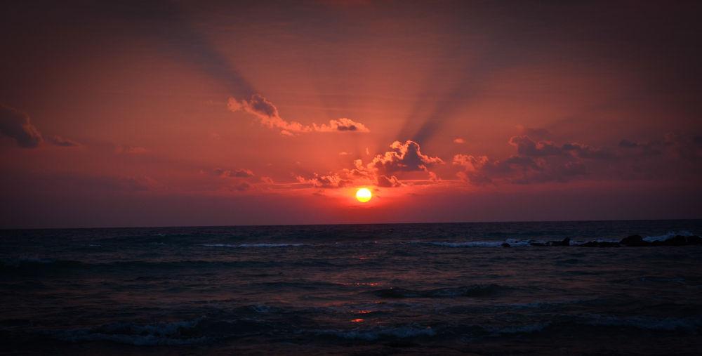 Good morning Sunshine  by sommukherjee