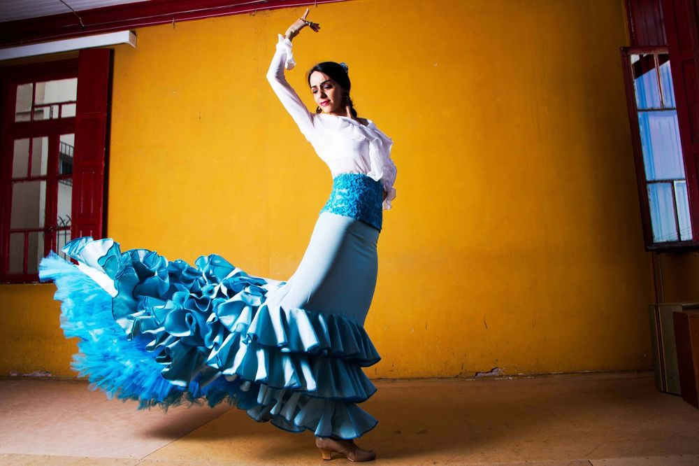 Flamenco by carlostoigo