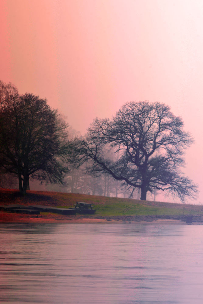 The foggy lake by tommytechno