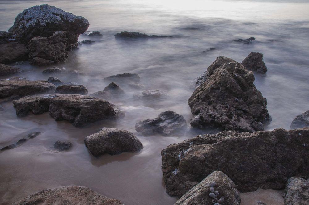 Photo in Landscape #beach #seaside #sea #waves