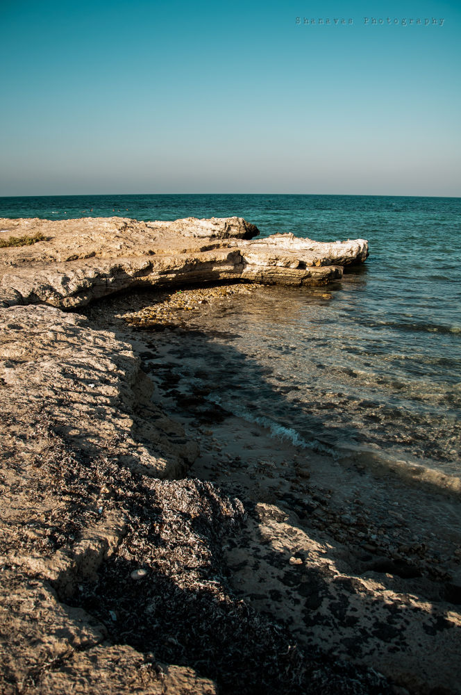 Photo in Nature #beach