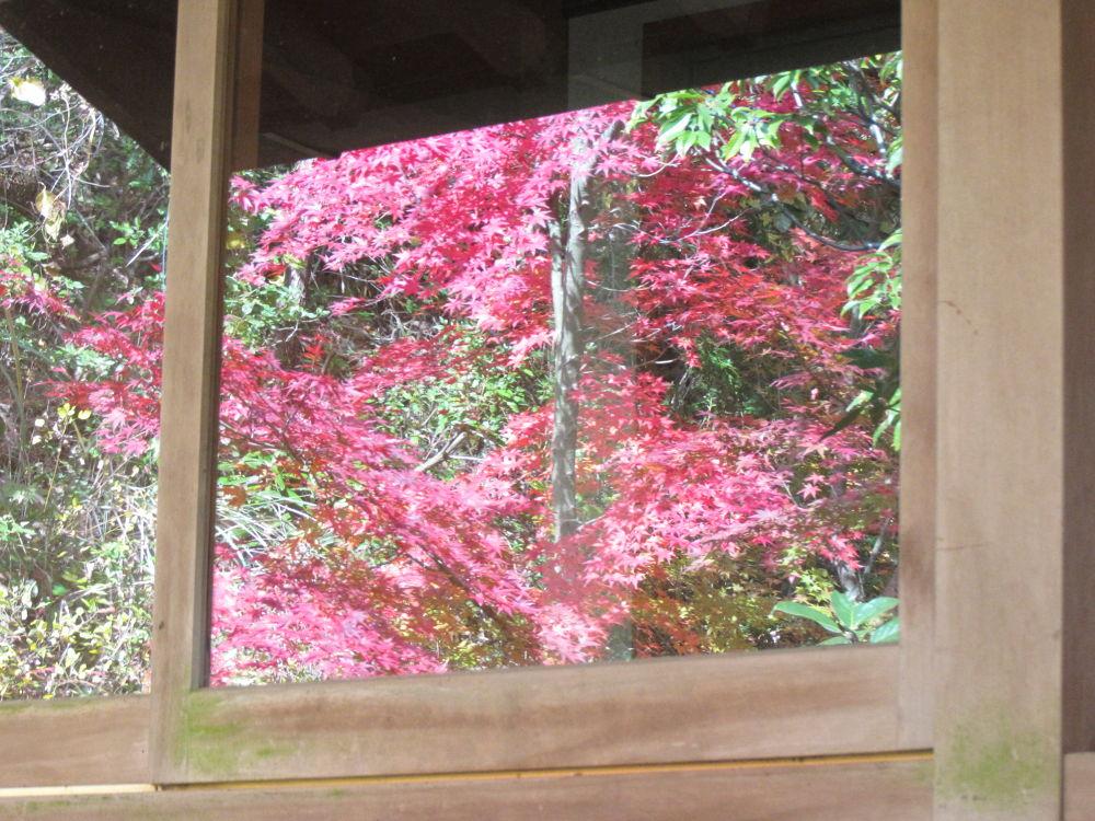 reflection by Hiroshi_Kume