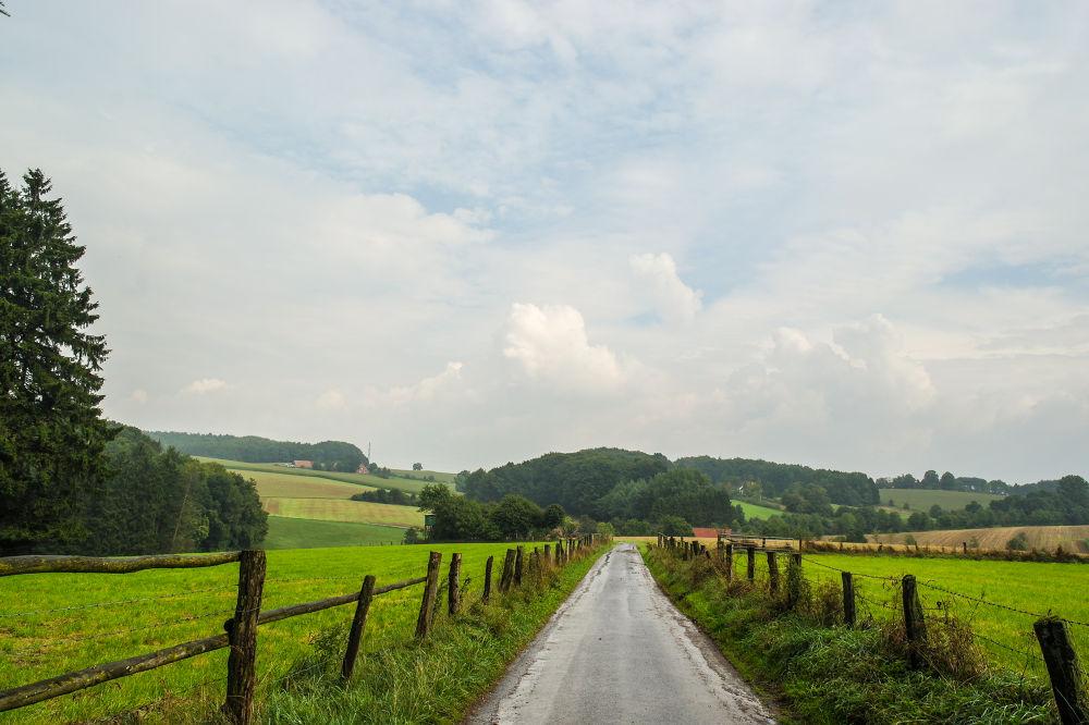 Landscape in midsummer by brallo5