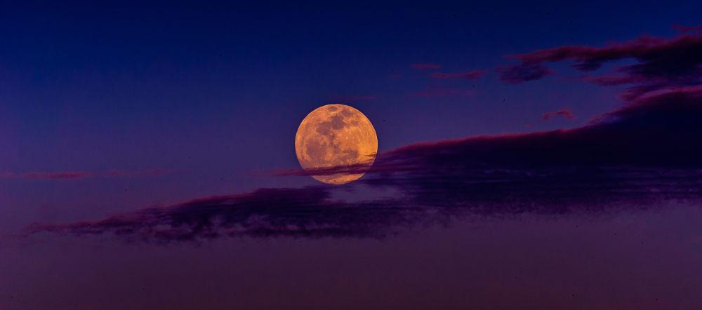 Full Moon Madness  by Abdelkader Hadj Aissa