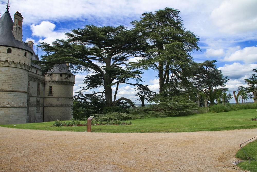 Château de Chaumont sur loire by Miraï Photo