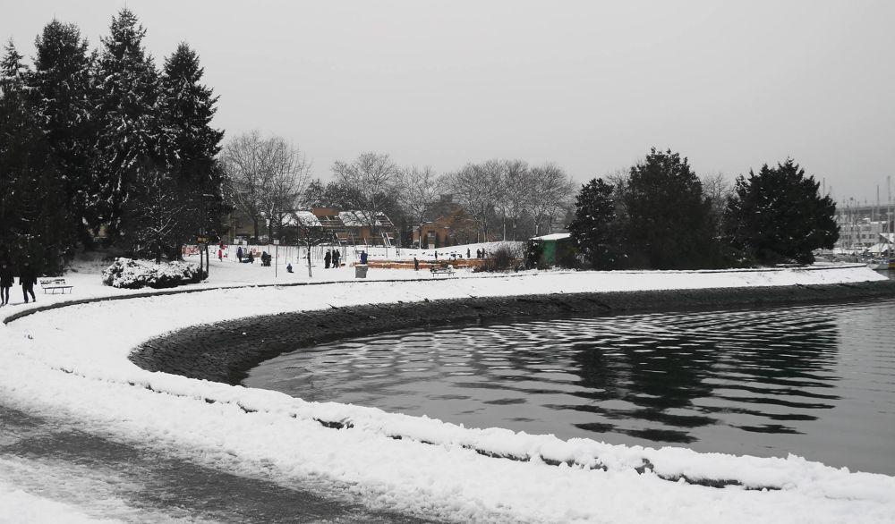 First Snow on the Creek by John Nijjar
