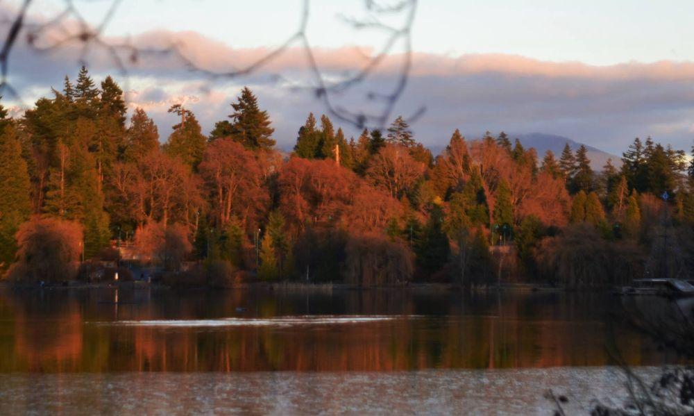 Photo in Landscape #electricwarrior