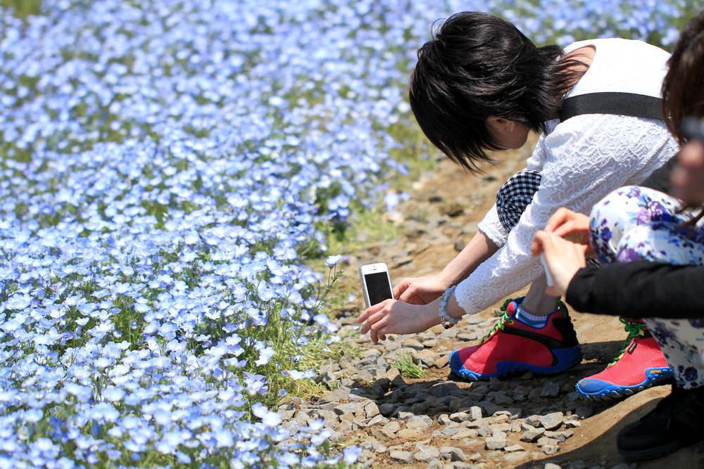 I like taking a picture by phone by Yoshimasa Osaki