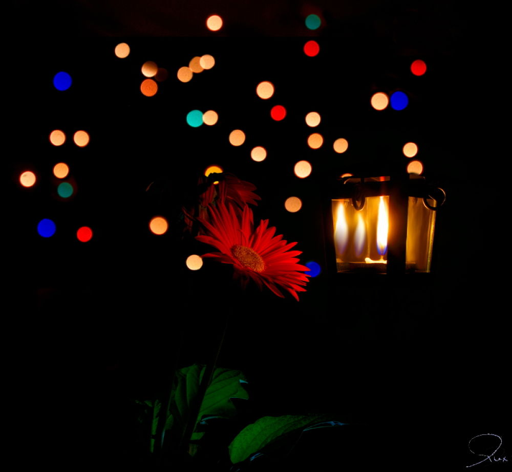 Lanternas by AlexDiogo