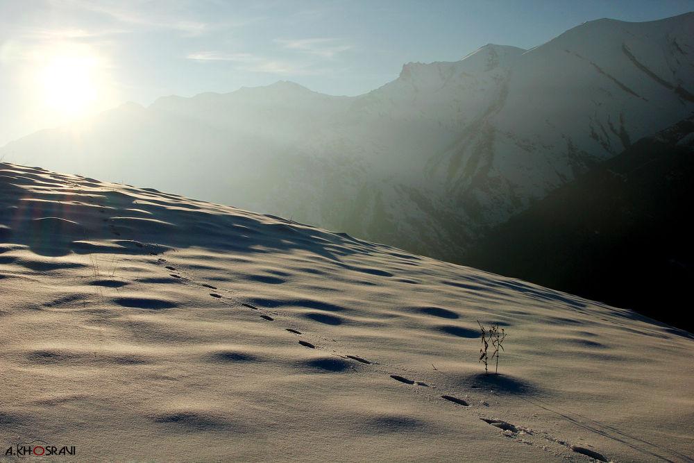 mountain tochal by Arash khosravi