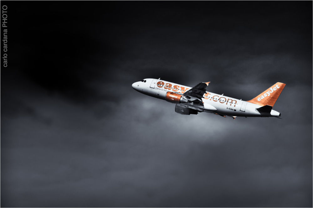 Fly2 b&w by CarloCardana