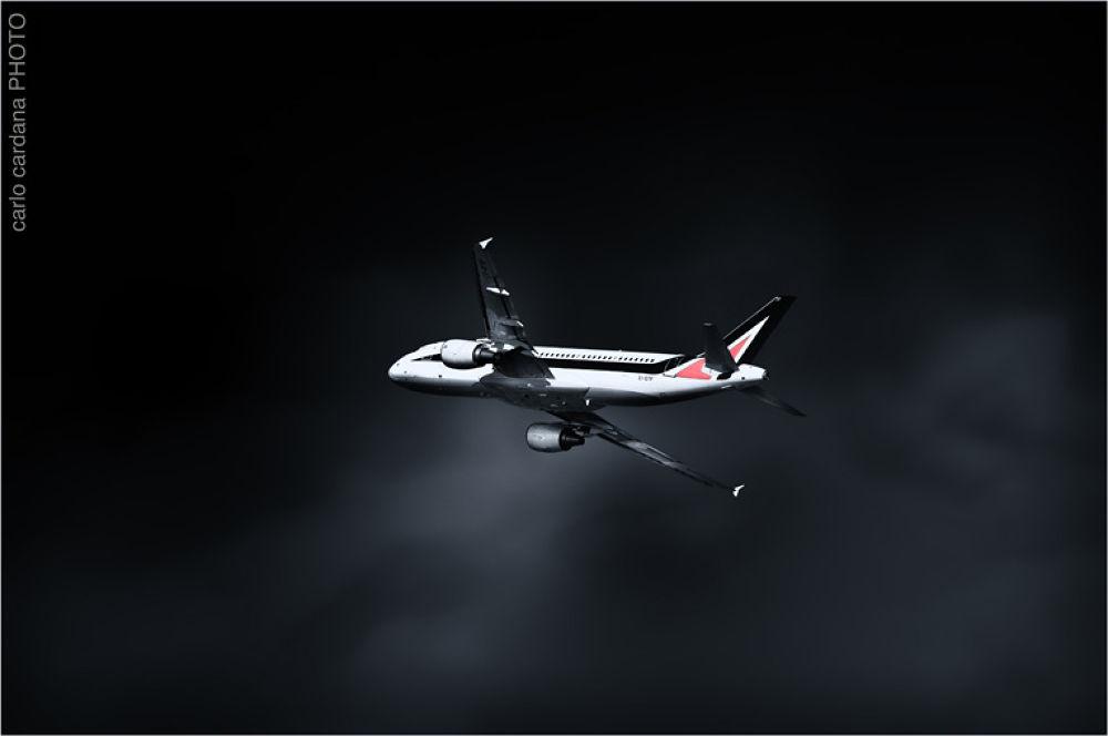 Fly b&w1 by CarloCardana