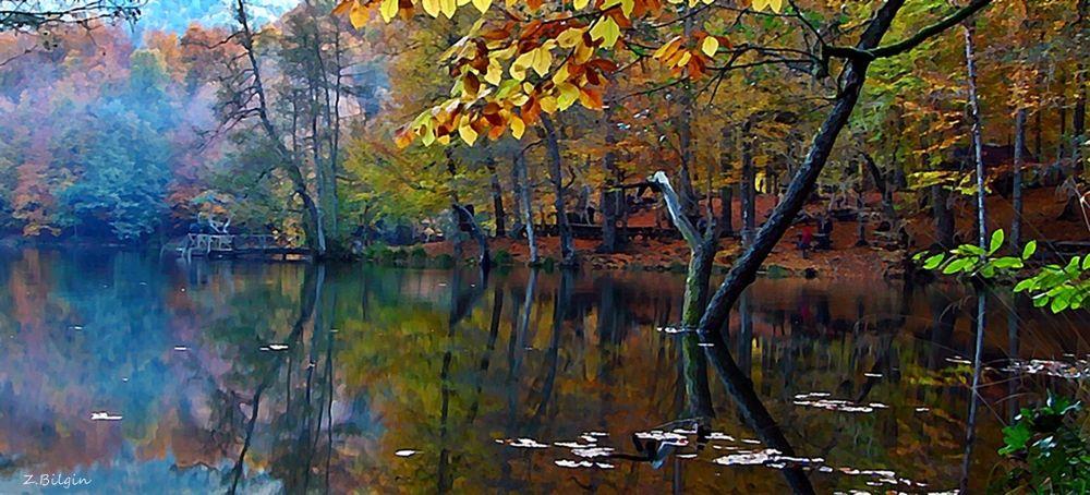 Yedigöller Bolu Turkey by zekibilgin