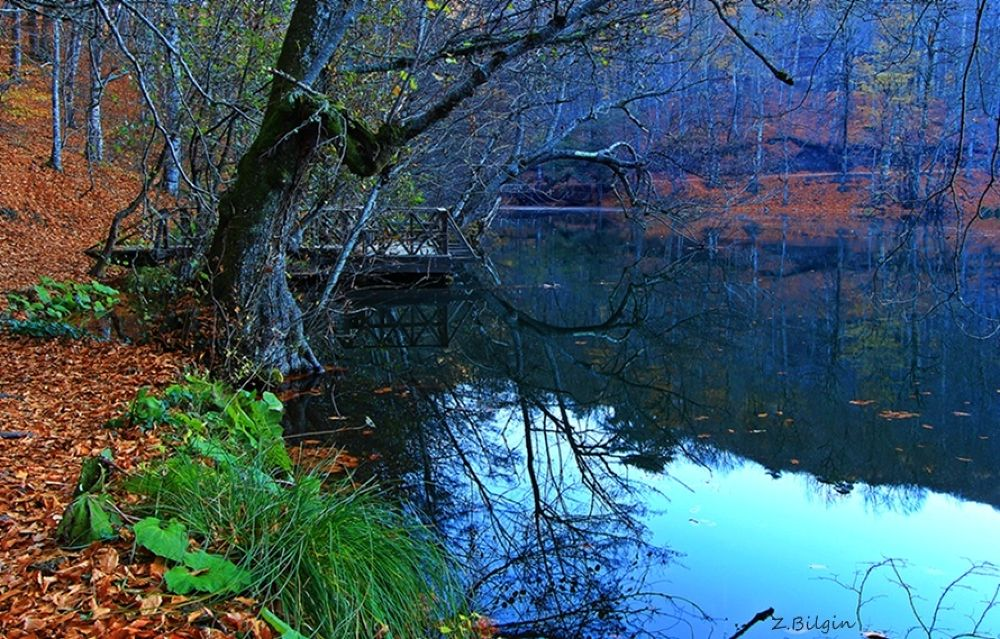 Photo in Landscape #yedigöller #seven lakes #bolu #turkey