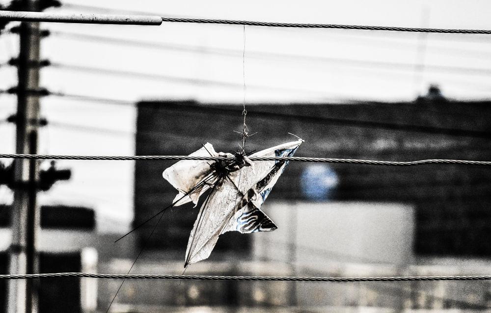 kite by Jawad Ghazanfar Naru
