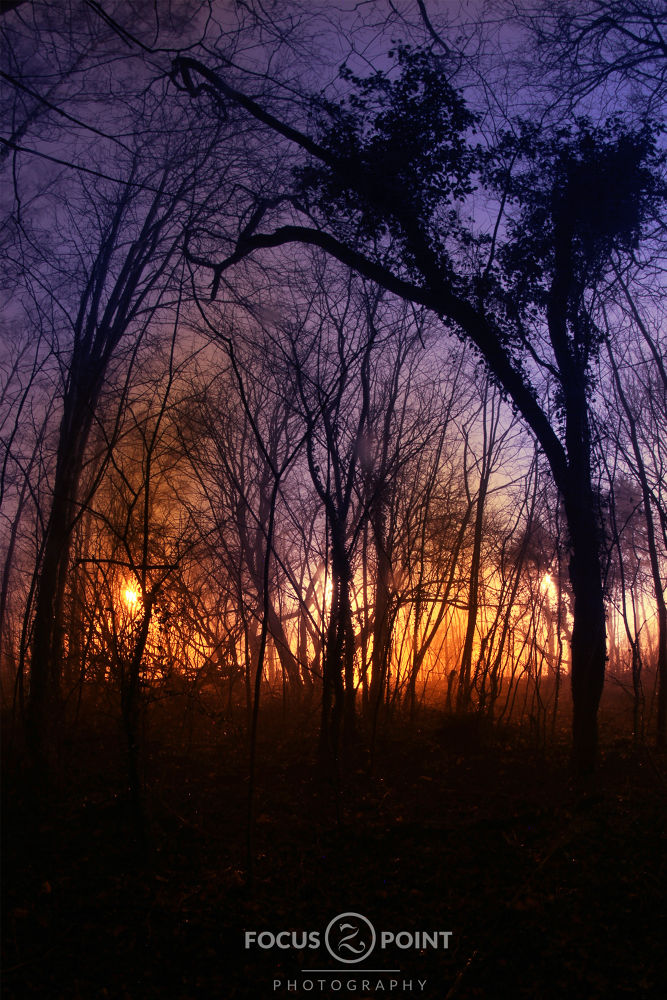 Burning Desire by  Focuspoint Foto  The Moment when it starts to Burn, Everything comes to an end. S by Shaun