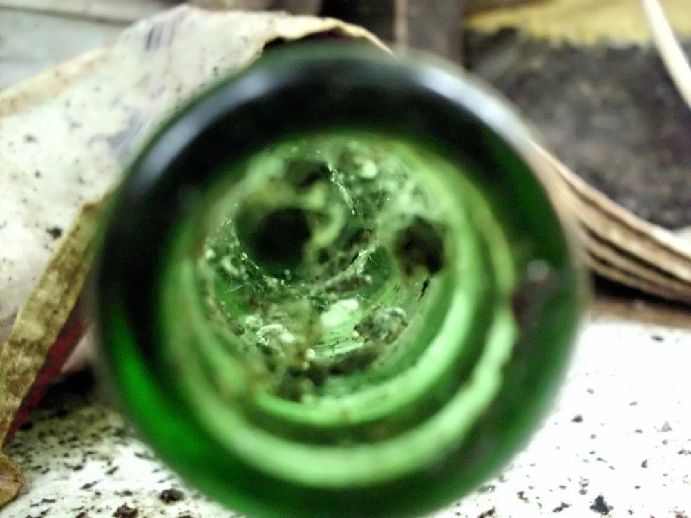 inside a bottle by putrasetyawan942