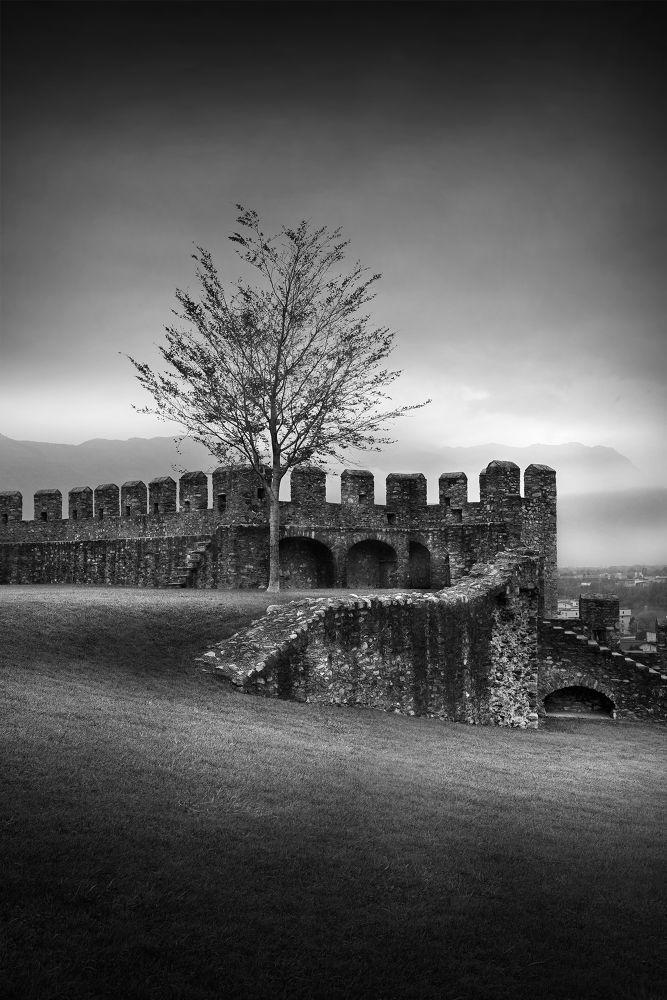 castello by farhado