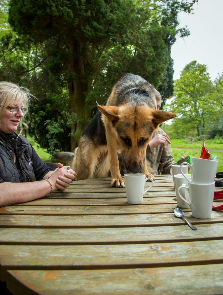 Keirra needs caffeine by Photohumph