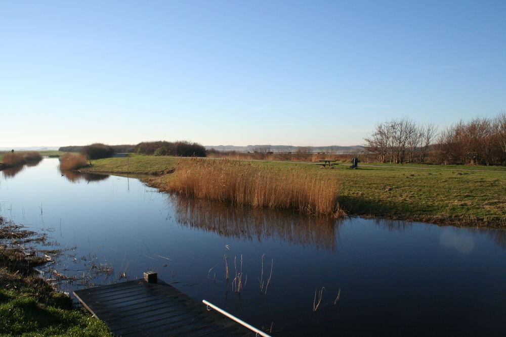 IMG_7009 by JanMulder