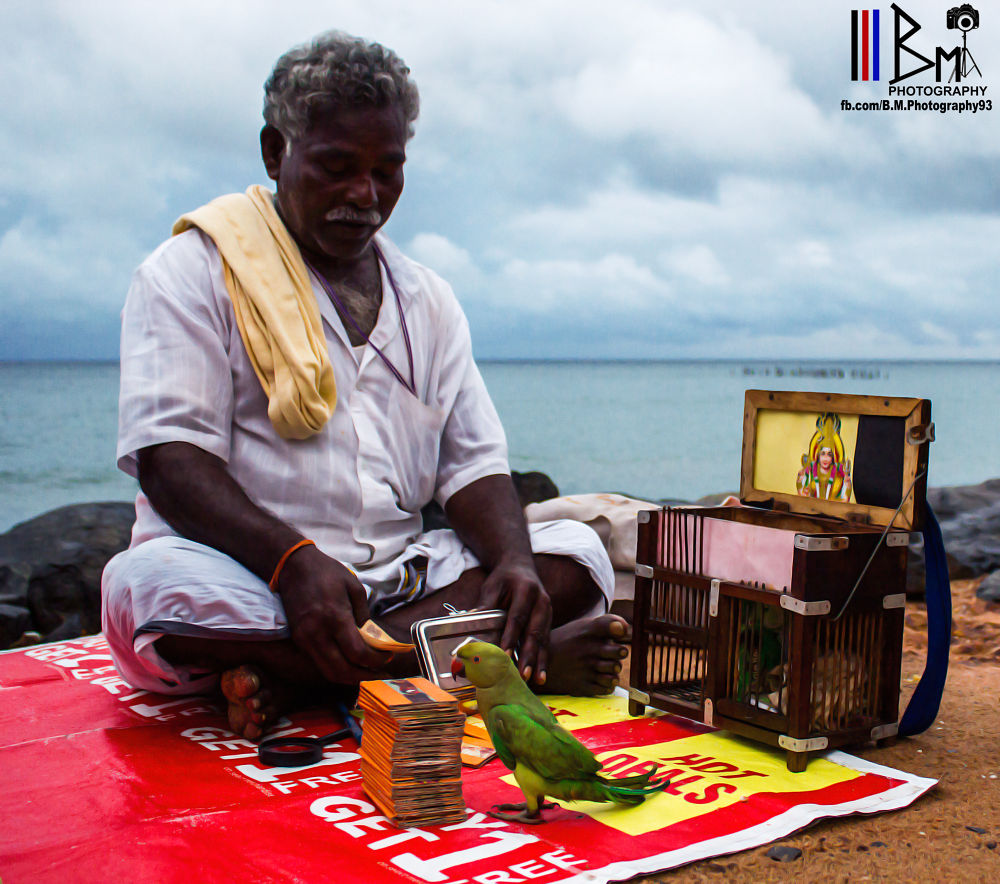 Photo in Street Photography #parrot #beach #fortune #culture #india #tradition