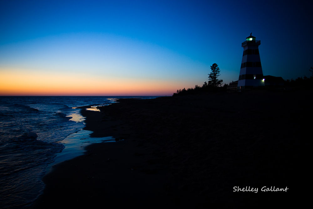 IMG_7226-1 by shelleygallant501