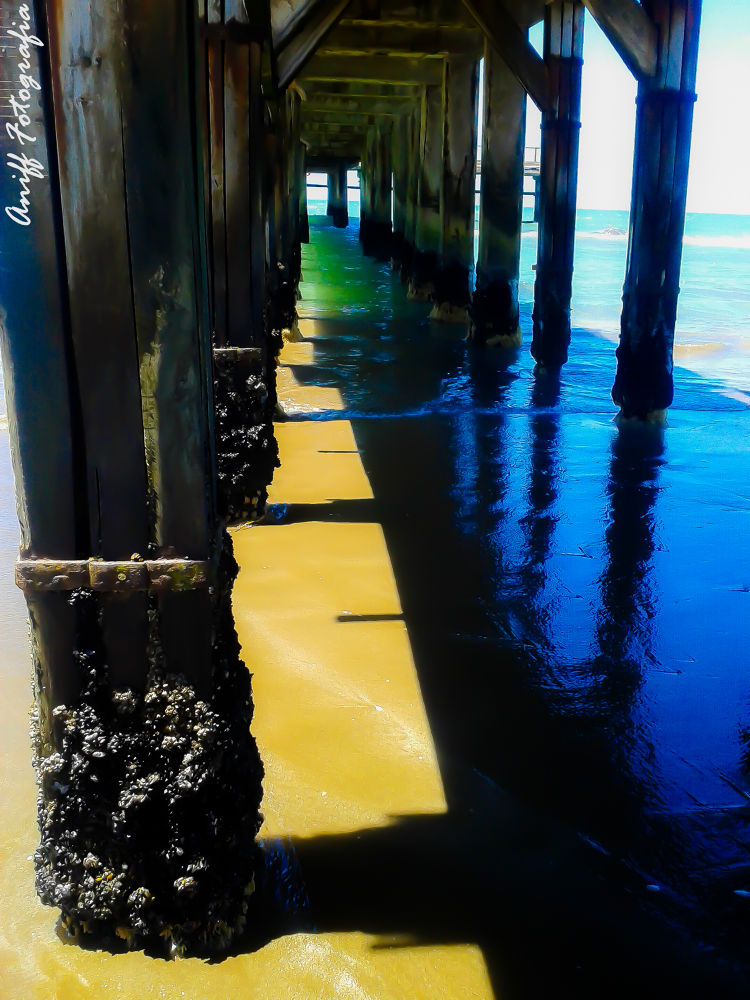 MUELLE by Aniff