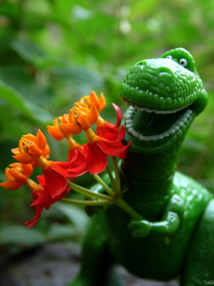 Pidiendo ayuda para recolectar flores para mi novia  by Lai Grinder