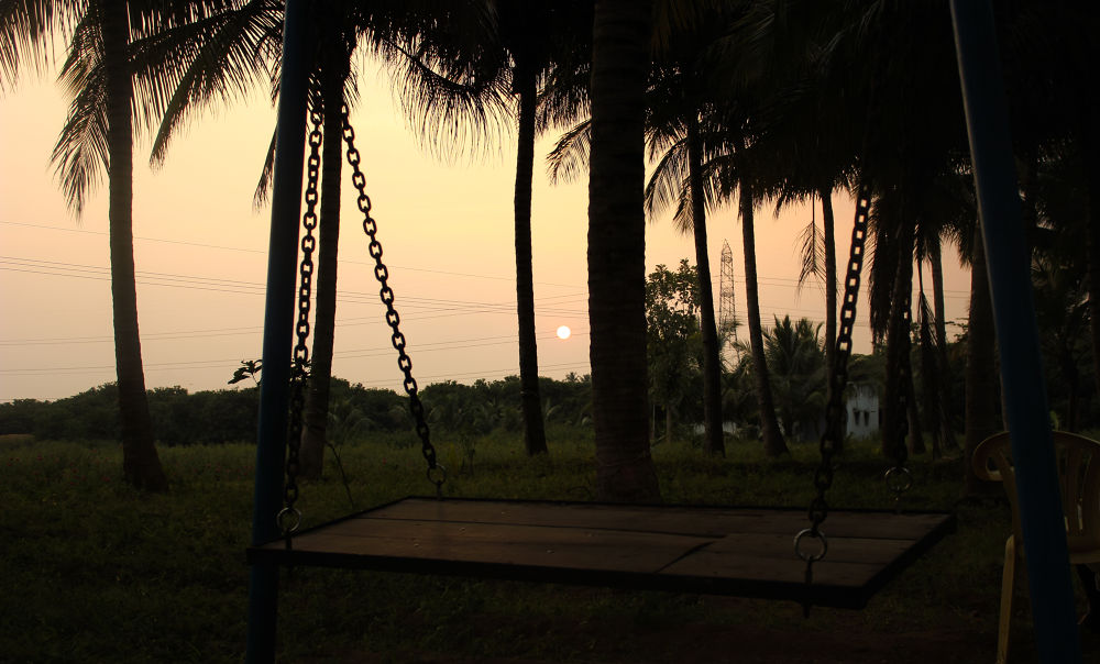 IMG_5605 by Vinoth S