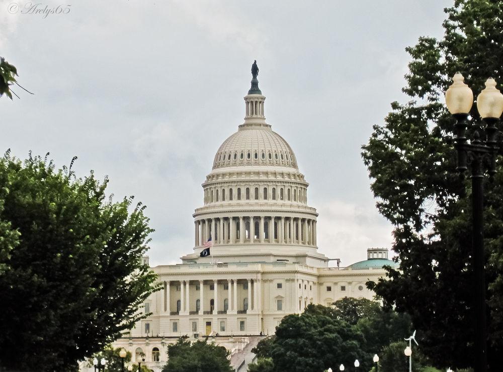 Washington by Arelys