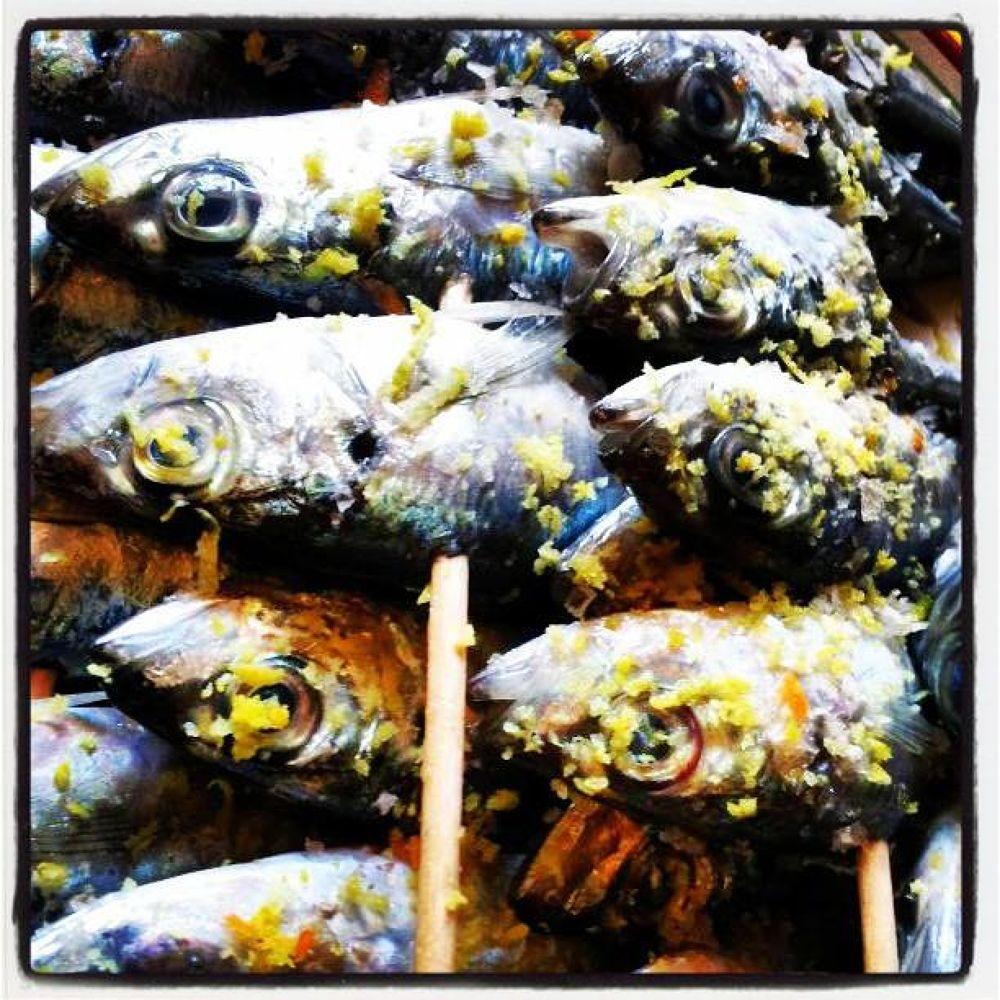 pescao1 by claudiabparraga