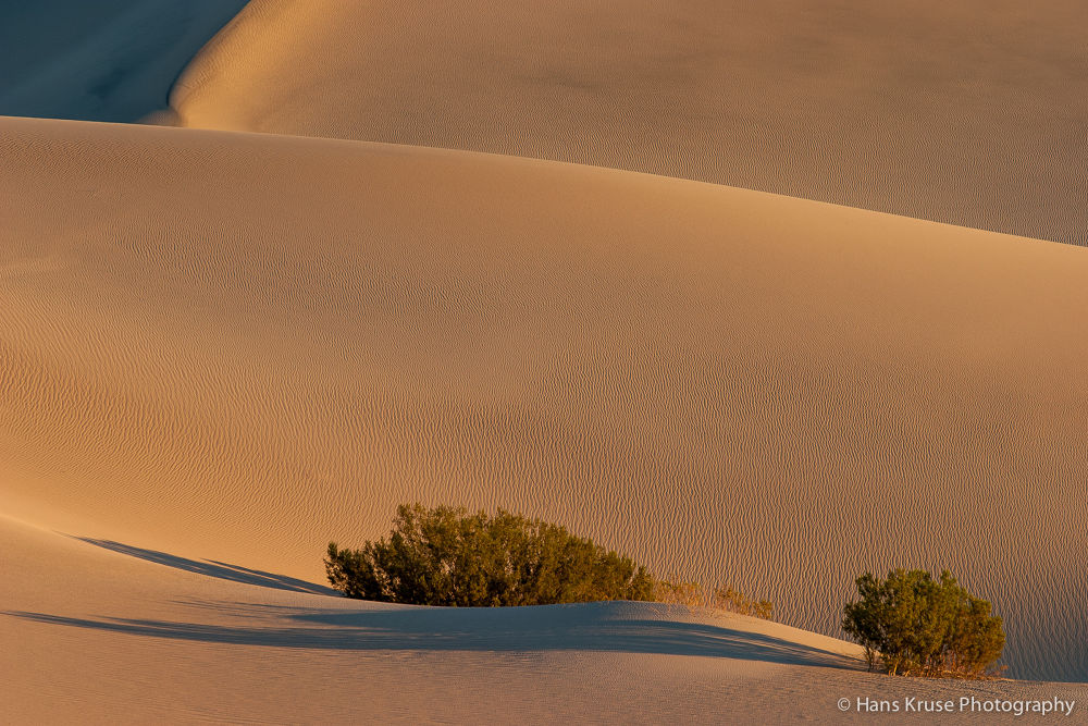 Dunes in morning light by Hans Kruse
