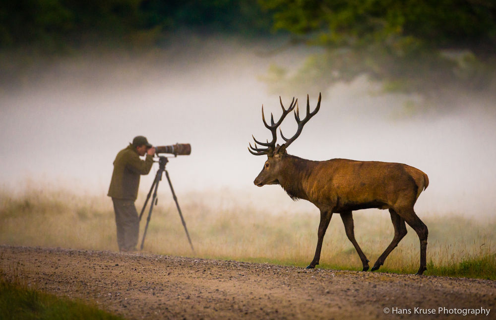 The oblivious photographer by Hans Kruse