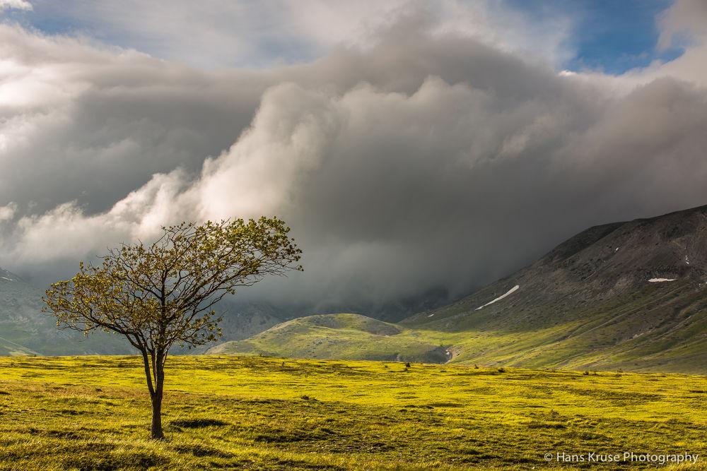 Photo in Landscape #italy #abruzzo #campo imperatore #gran sasso